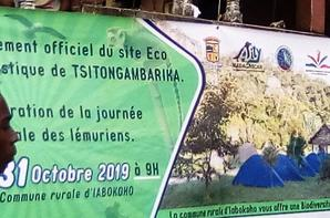 PARC TSITONGAMBARIKA Fort Dauphin Madagascar