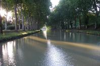 GISC : NETTOYONS LES BERGES DU CANAL DU MIDI Dimanche 27 Septembre à 09h - Berges du Canal du Midi, bateau Le Cocagne