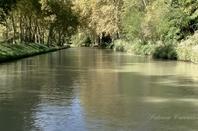 PROTÉGEONS NOTRE  NATURE   ...NETTOYONS LES BERGES DU CANAL DU MIDI ..!