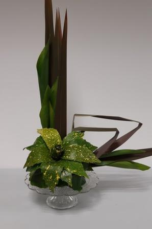 de feuilles en fleurs