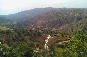 قلعة بني قاسم منظر فتان