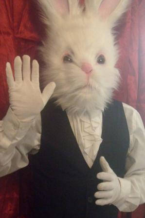 Nouveauté (à partir de décembre 2016) la  mascotte lapin