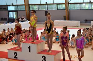 Compétition régionale à VIllefranche samedi 15 avril 2017
