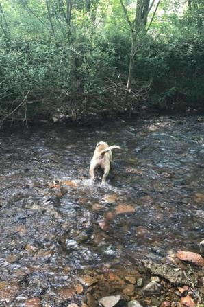 Moment à la rivière