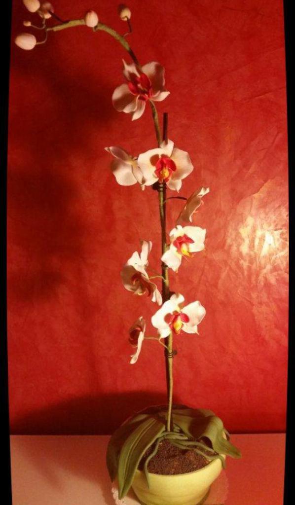 orchidée en pate a sucre !