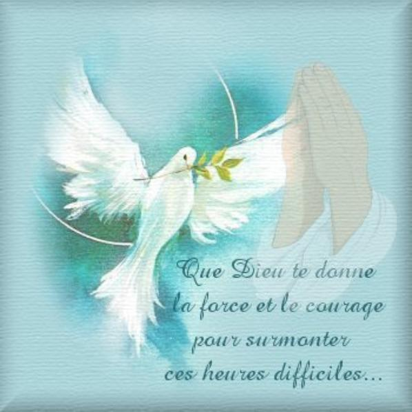 Pour Notre Ami Witod Qui A Perdu Sa Maman Blog De Loune471