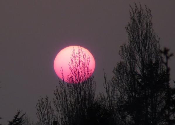 La Lune Rose Blog De Loune471