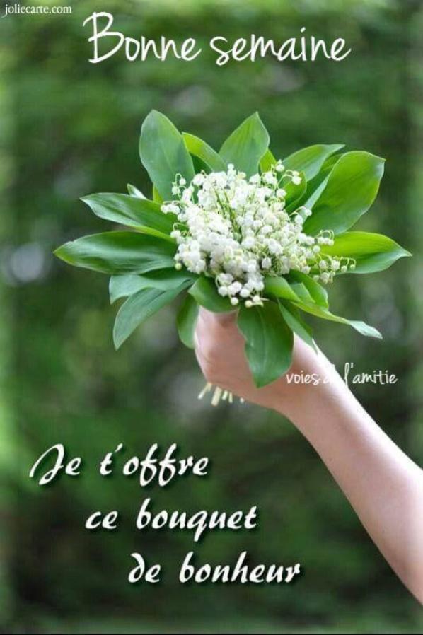 Doù Vient La Tradition Du Muguet Du 1er Mai Blog De Loune471