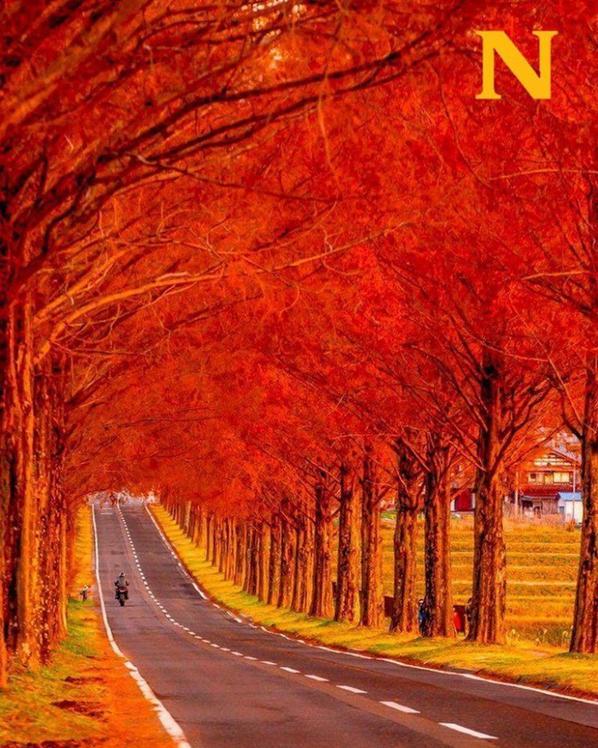 """hello ''bonjour l""""automne ' adieu l""""ete"""""""