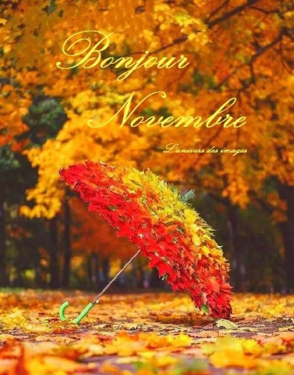 ??????? Au revoir Octobre , Bonjour Novembre ???????