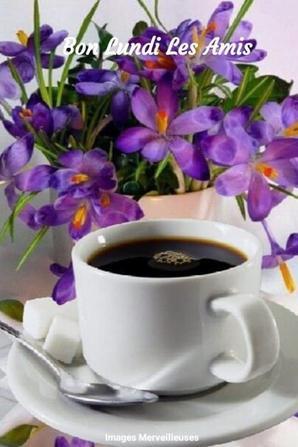 un petit cafe de l'amitie ca vous dit ???