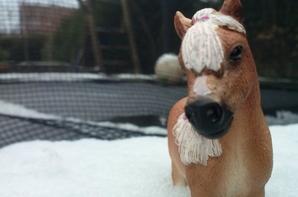 on profite des dernières neiges avant le printemps (shooting de lucy )