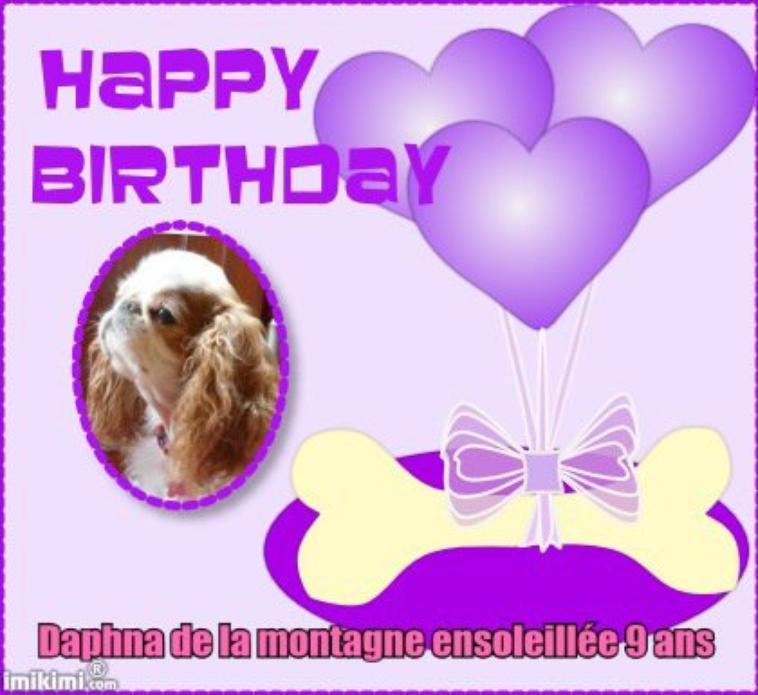 Bon anniversaire Daphna