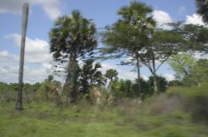 Autoroute et villages vers Yamoussoukro