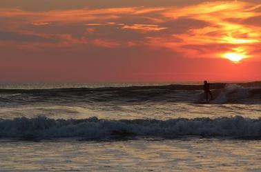 Belles conditions de surf !