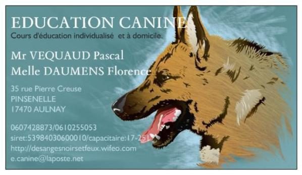 EDUCATION ET PENSION CANINE AULNAYSIENNE