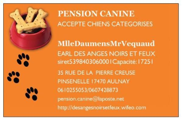 PENSION CANINE AULNAYSIENNE