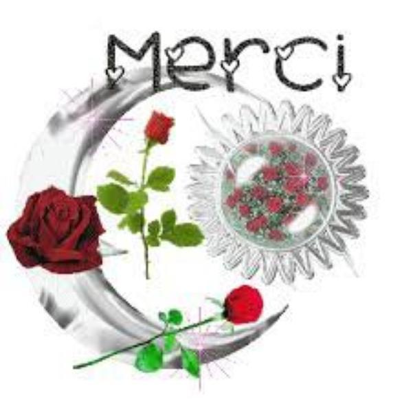 merci and thank you de tout mon coeur de me suivre