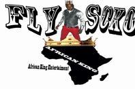 fly-scko