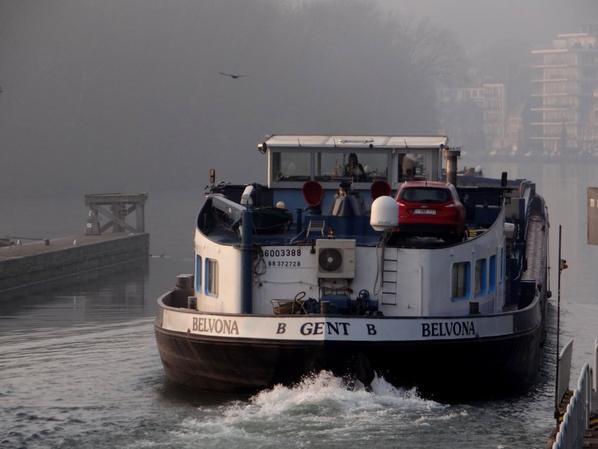 BELVONA traverse une légère brume matinale sous un levé de soleil scintillant... -  SUSANNE, 1er spits de l'année venant de la Haute-Marne (Bologne)  ;)