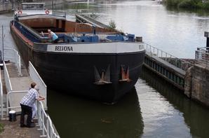 25, c'est le record journalier de l'année à l'entrée & sortie de la Haute-Meuse belge ce vendredi 23 mai 2014...
