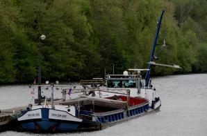 VAYA CON DIOS est bloqué à l'amont de La Plante avec un enfoncement de 2,45 m. Il devait être sorti de la Haute Meuse avant la baisse d'eau annoncée pour ce lundi (-0,50m.> 2,00m. du 27 au 30/4!) s'il n'avait pas subi un arrêt à l'amont d'Anseremme suite à une avarie à cette écluse....  :(