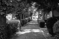 Prise de vue en noire et blanc
