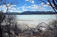 # Sulfur Geyser - Rotorua