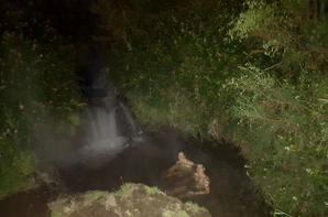 # Spa Thermal pool - Taupo