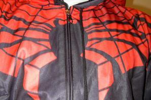 Spiderman superman super heros  Mamadou Gassama Fake news?