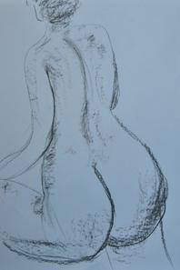 stage de nu de janvier 2014