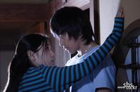 Heaven's Tree: KDrama - Romance - Drame -10 Episodes (2006)