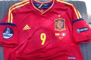 A VENDRE maillot de foot de l'ESPAGNE porté N°9 TORRES finale EURO 2012 contre l'ITALIE