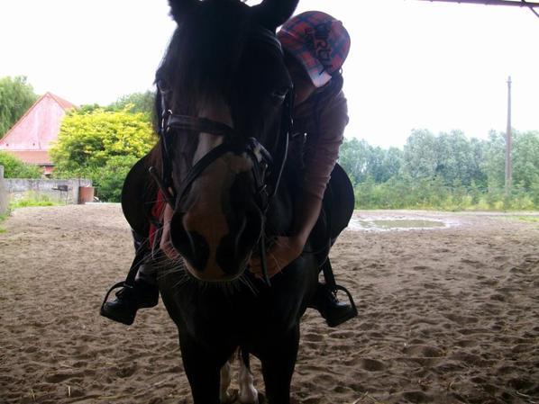 L'équitation, plus qu'une passion <3
