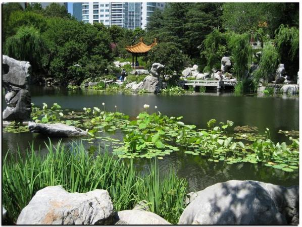 #ChinaWeek #Jardin Chinois de Sydney