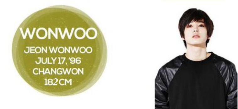 Seventeen Members Wonwoo