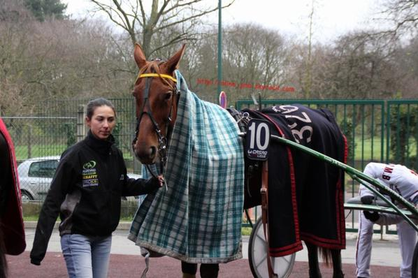 Vincennes - Samedi 8 Décembre 2012