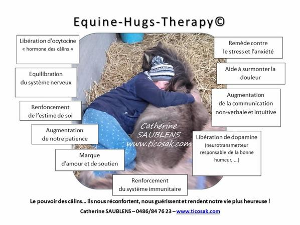 Equine-Hugs-Therapy (c)