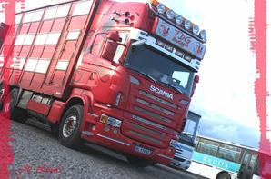Scania R Transport TDG Bretagne