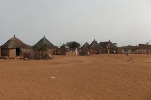Excursion en brousse et visite d'un village sénégalais