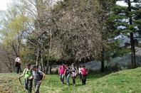 Samedi 20 avril 2019 st cirgues de jordanne - la flandonniere