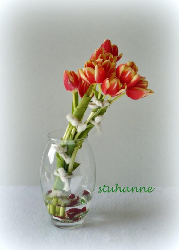 j'ai voulu maîtriser les tulipes.................