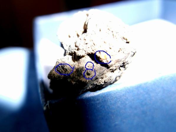 Ma meteorite vivante.