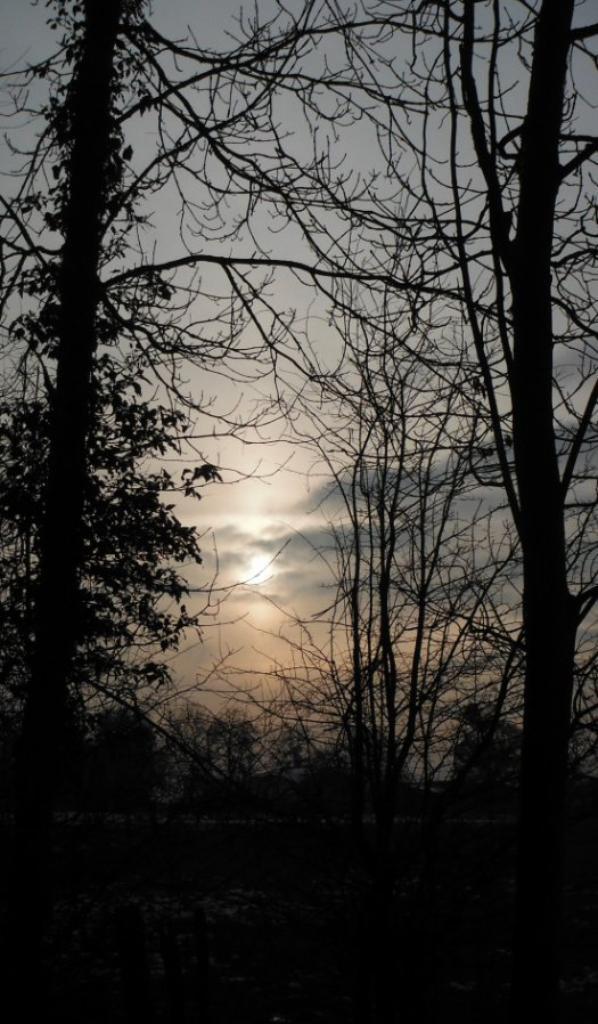 Une journée d'hiver en Argonne