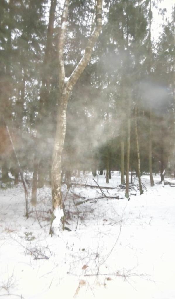 Tombe la neige...