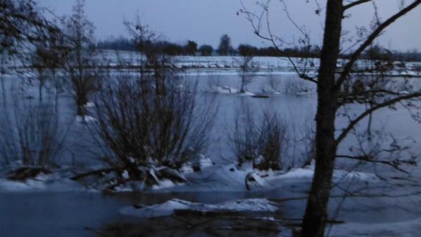 Quelques vues d'hiver