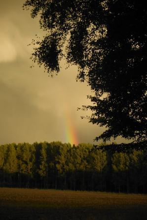Journée pluvieuse ensoleillée...