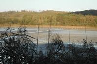Un étang en Argonne