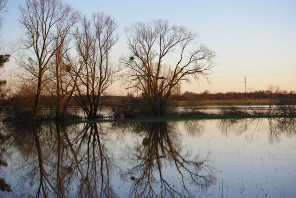 Argonne nature sous inondations