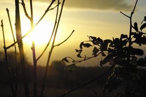 coucher de soleil du jour